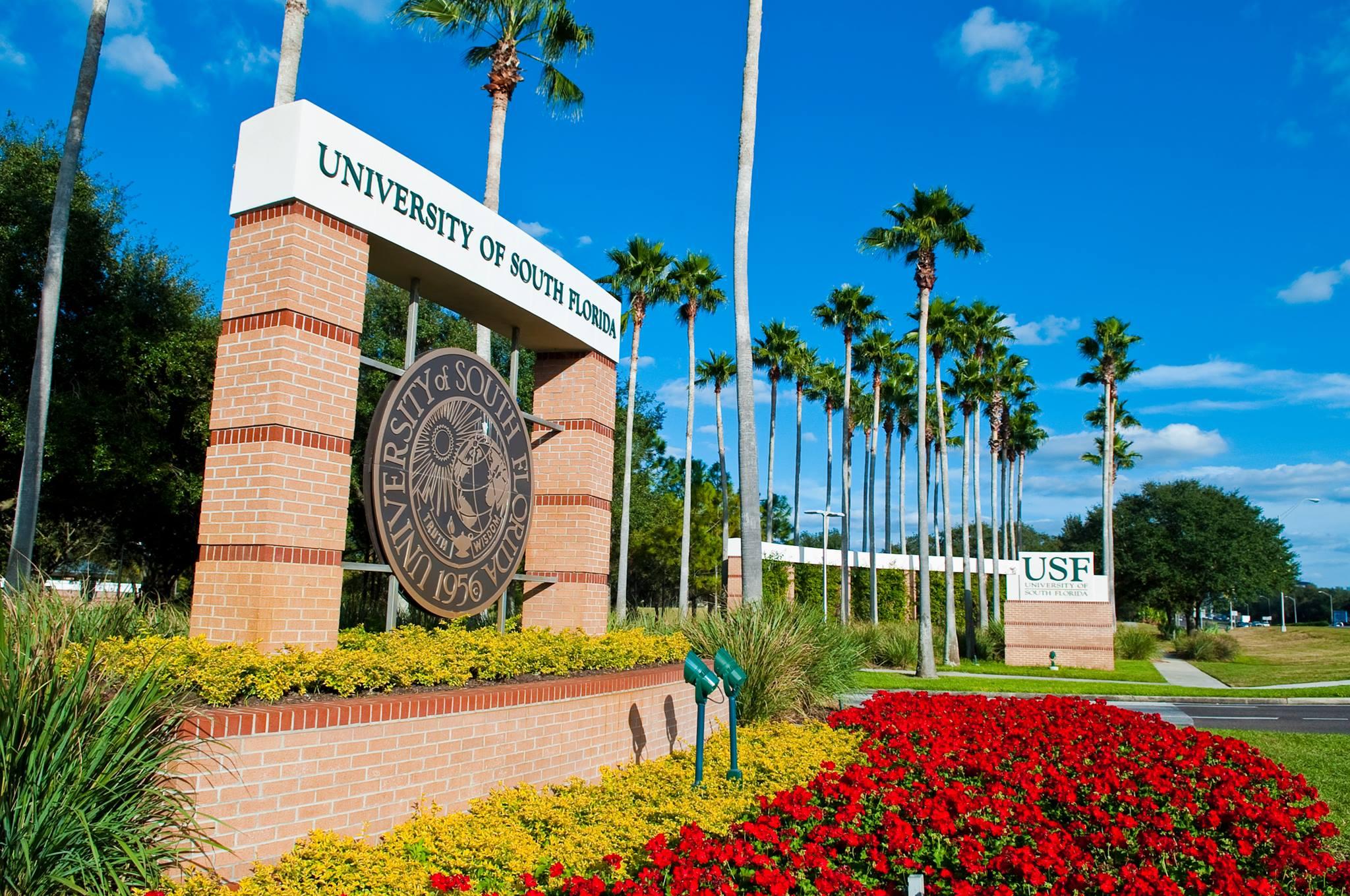 Usf Academic Calendar 2022.University Of South Florida Acalog Acms