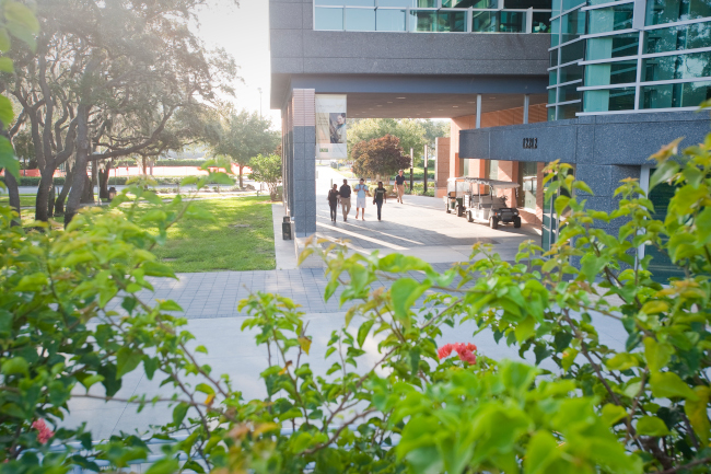 USF's muma college of business