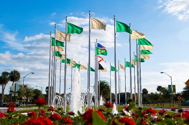 USF flags around a water fountain